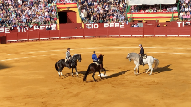 Photo of Rejones en la Feria de Jerez 2018