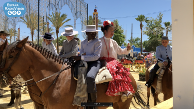 Photo of Especial Feria del Caballo 2019 (II Parte): La Feria
