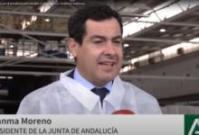 Photo of Andalucía apuesta por el autoabastecimiento ante el coronavirus en empresas de la Comunidad
